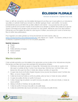 Downloadable activity screenshot of cover for Blooming Flower