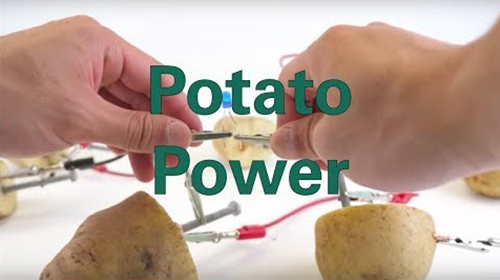 Potato power image